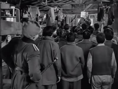 Stalag 17 (1953) – One führer is enough