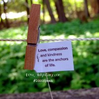 Practising Compassion #1000Speak
