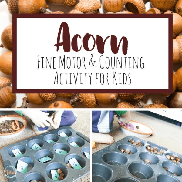 Acorn fine motor square-2