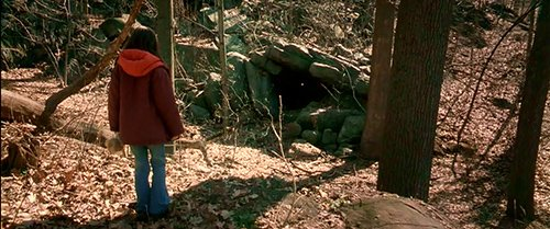 This mysterious cave is in fact the programming site where Charlie further traumatized and played with Emily's mind.