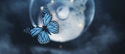 As programming is going on, a blue Monarch butterfly flies above the globe, making it clear that all of these visuals symbolically represent the trauma, abuse and programming of a MK slave.