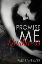 promise me darkness cover
