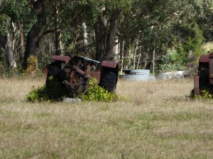 1010218 (Monday the 18th of May 2015 – Tenterfield to Wylie Creek)