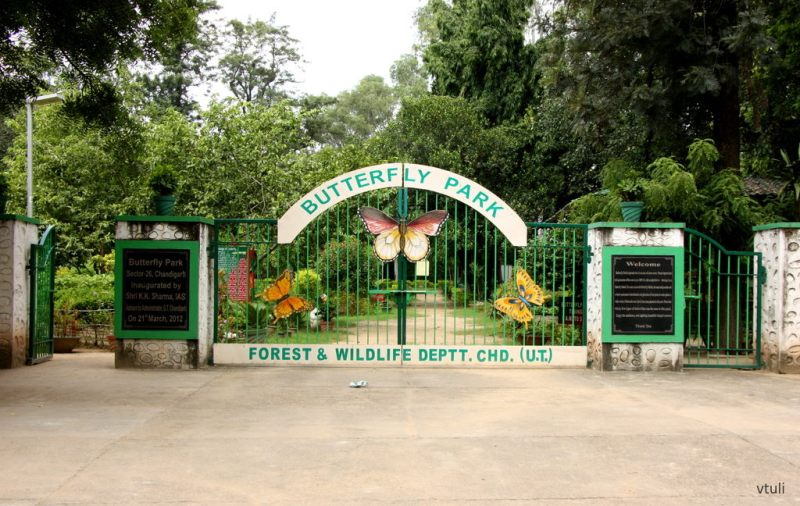 The Entrance Gate - Butterfly Park Chandigarh