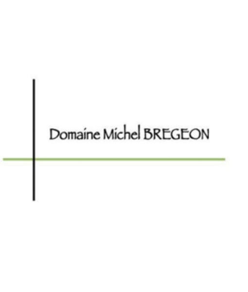Logo-Michel Brégeon