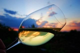 Calici di Vino a Badoere di Morgano