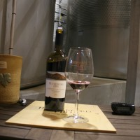 Tasting in the Winery