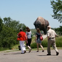 Giant Bison with No Name