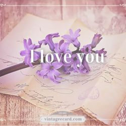 Vintage Ecard Love Picture Flower I Love You 3 Vintage Ecard