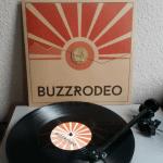 Vinyl Beauties: Buzz Rodeo – Sports