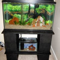 diy aquarium stand uk - DIY ADA Style Aquarium Stand | Page 17 | UK Aquatic Plant Society