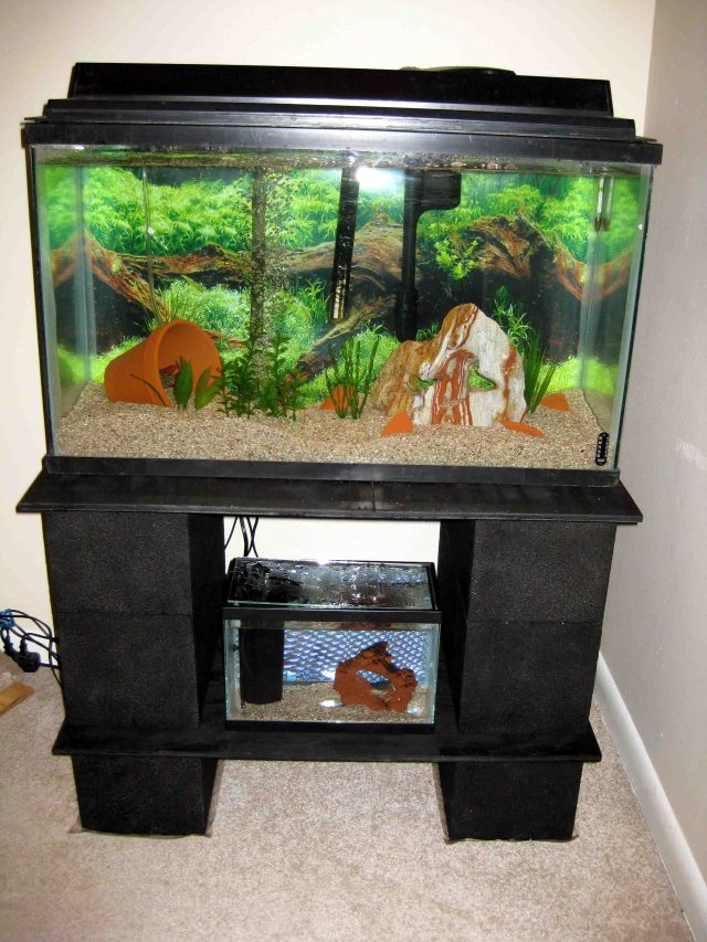 Plans for Sales Diy Wood Aquarium Stand Wooden DIY PDF Download