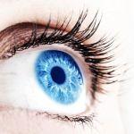 ¿Cómo funciona el ojo humano?