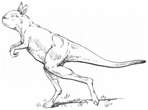 GiantKangarooBrianRegal