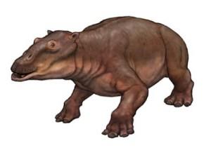 BigLipsFossil