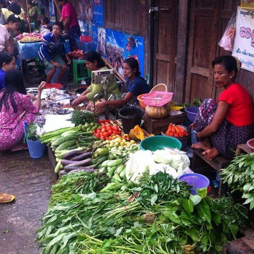 Morning market stroll through Mayangone today past fruit, fish and vegetable sellers before classes for @camerasforasia #yangon #myanmar #myanmarphotos #myanmarburma #burma #market - from Instagram