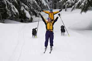 Skiers and poodles on the way to High Hut © Ed Book Photo