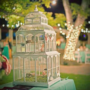BirdcageWeddingNight