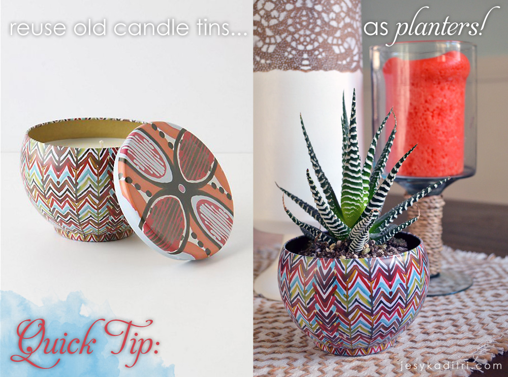 Quick Tip: Reuse candle tins as planters