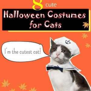 2014 Halloween Costumes for Cats