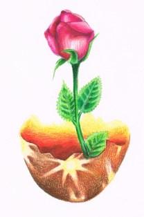 "2010. ""Phoenix Gift."" Book illustration."