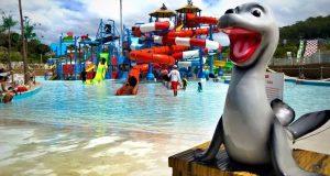 El Surf N' Fun Water Park es promocionado como el parque acuático más grande del Caribe.