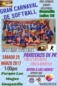 Afiche del Carnaval de Sófbol.