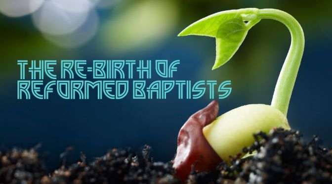rebirth of reformed baptists
