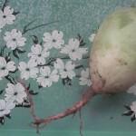 Winter radishes: international veg of mystery