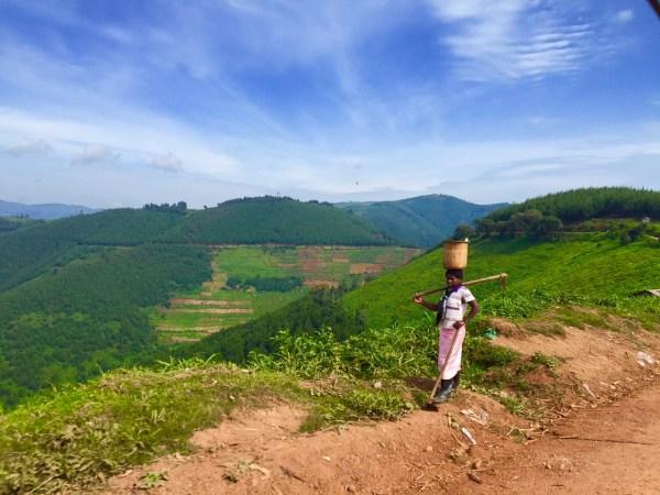 Oeganda vrouw in het veld