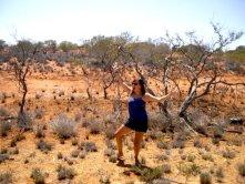 australie spinifex