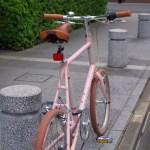bruno_flat_sakura[1]