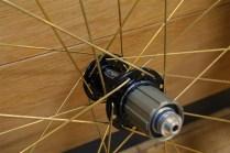 wheel_tni_goldspork