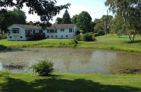 Focus at Rutland's Piedmont Pond is on ways to revive it