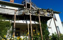 ACLU sues Burlington on behalf of tenant who faced eviction