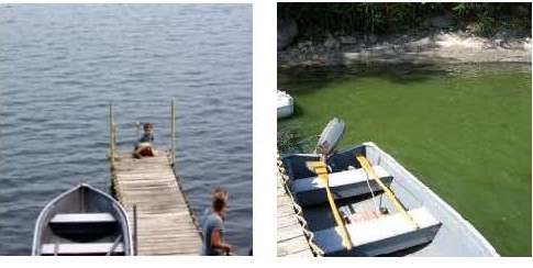 "Left: A shot of algae-free waters of St. Albans Bay off Gould Susslin's dock. Right: A 2006 blue-green algae bloom off the same dock. ""This stuff is dangerous,"" Susslin says of blooms that grow dense enough to carry toxins. He has worked for five decades to reduce fertilizer pollution that drive weed and algae growth in the bay he loves. Photos courtesy of Gould Susslin"
