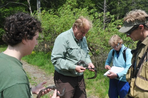 Herpetologist Jim Andrews (center) of Salisbury holds a northern water snake caught by students in his University of Vermont field herpetology course. From left are students Taylor Swanson, Cindy Sprague and Matt Pierle. The non-venomous snake may bite someone who picks it up, but the bite will do no harm, Andrews says. Photo by Jason Plotkin