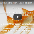 Expressions Related to Fish | Video Tutorial