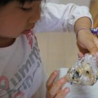 クッキングトイから卒業して、井本恵里さんの「まんてんキッチン」で食育&子供クッキング!