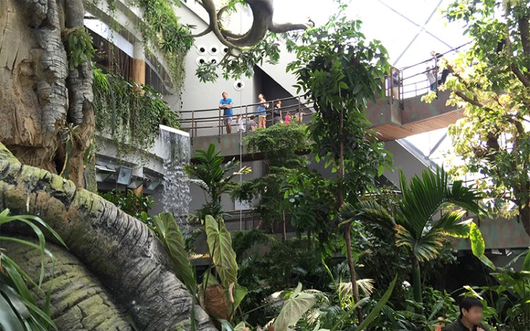 the-green-planet-citywalk