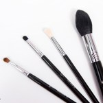 These sigmabeauty beauties are on my blog today where Imhellip
