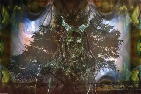 Lord of the Glade (redux)