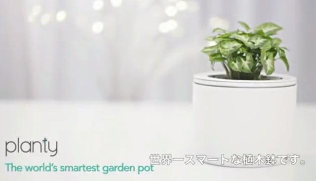 planty スマホで水やりを管理できるスマート植木鉢登場!トップ画像