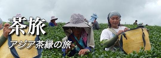 茶旅 アジア茶縁の旅