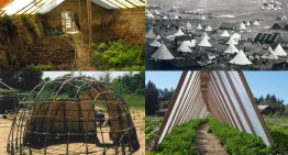 6 Cheap DIY Greenhouse Designs Inspired By Traditional Shelters