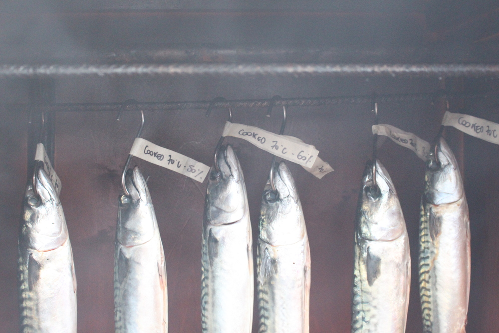 Cold-smoked mackerel recipe