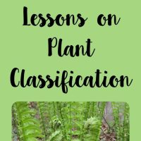 Lessons on Plant Classification
