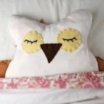 DIY: Heatable Owl Softie