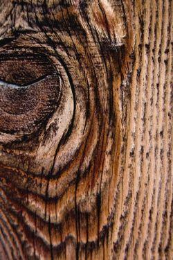 Small Of Wood Grain Wallpaper