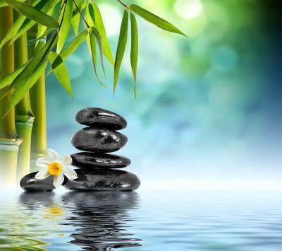 Zen Bamboo Wallpapers - Top Free Zen Bamboo Backgrounds - WallpaperAccess